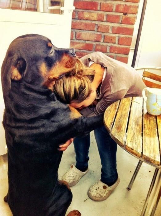 16- …E consolar você quando as coisas correm mal.