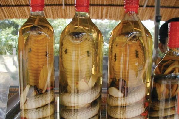 Vinho de cobra, Sudeste Asiático