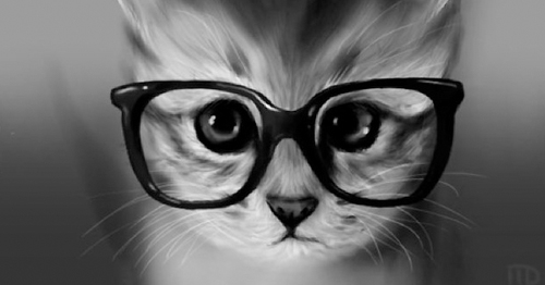 Gatos-capa Tumblr