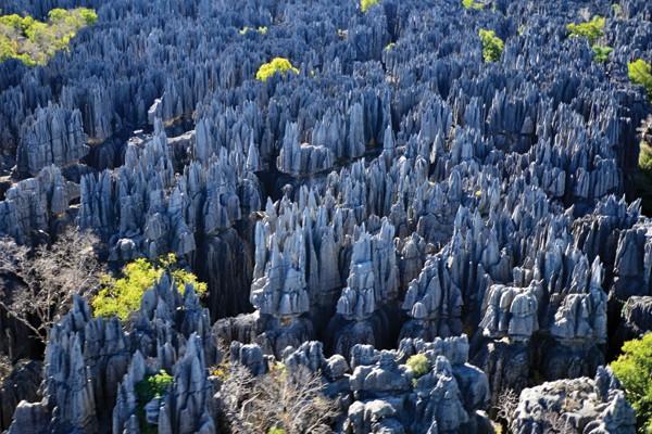 Tsingy de Bemaraha National Park - Madagascar