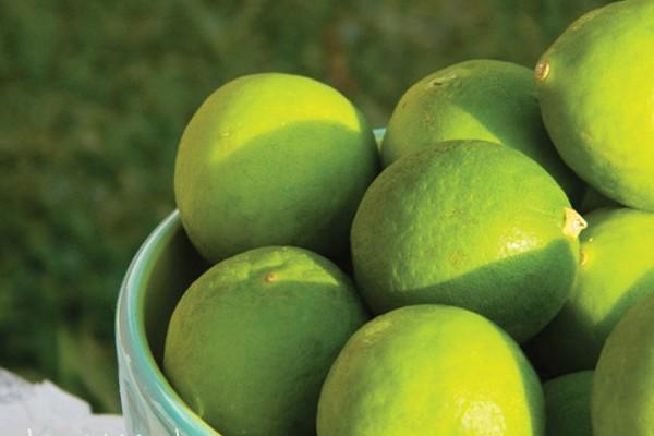 Limão / suco de limão
