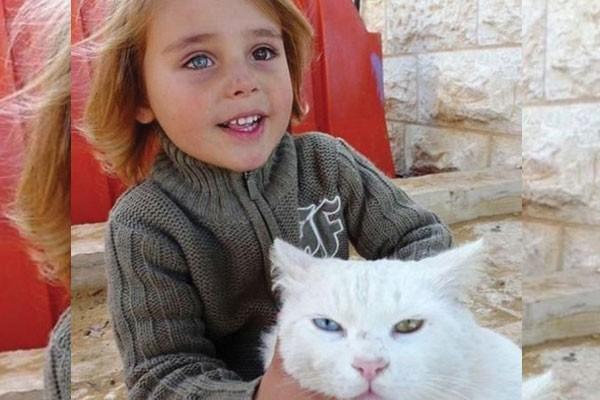 Esse menino e seu gato