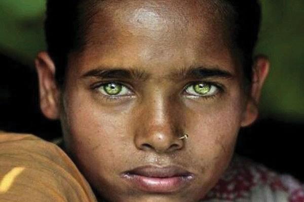 A história desses olhos verdes