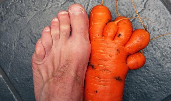 Essa cenoura que parece um pé