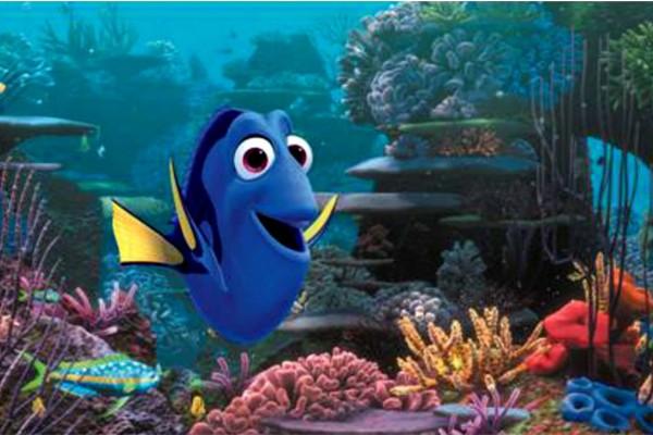O recife é composto com base em elementos grandes verticais e horizontais, além de elementos arredondados