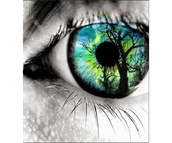 O corpo te faz enxergar com o cérebro e não com os olhos