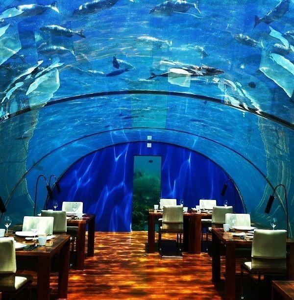 Ithaa Undersea