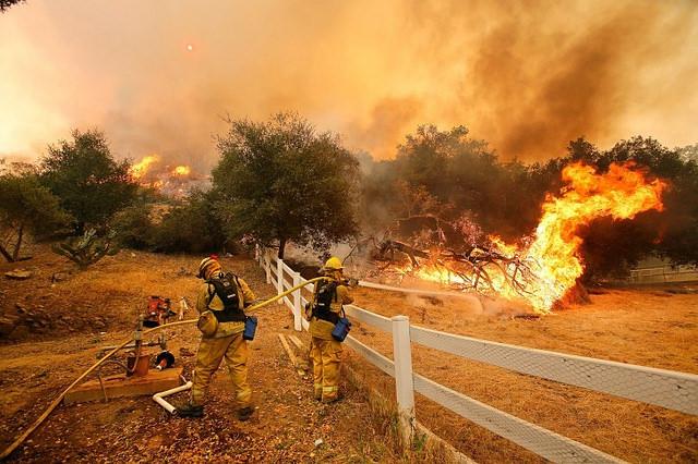 3. Incêndios Florestais