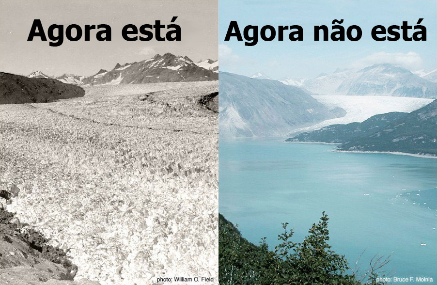5. A extinção das geleiras