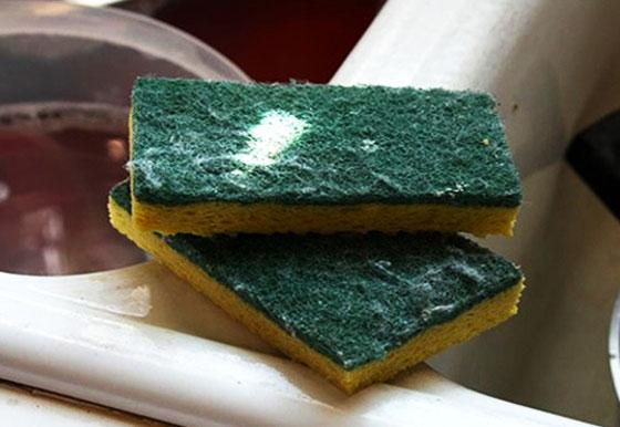 12. Tempo para desinfetar a esponja