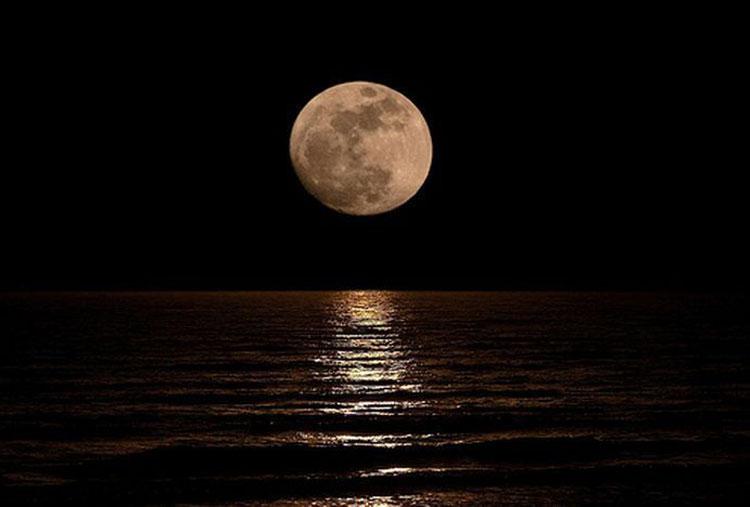 Ele só queria abraçar o reflexo da lua