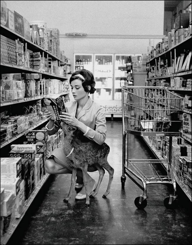 Audrey Hepburn com seu animal de estimação