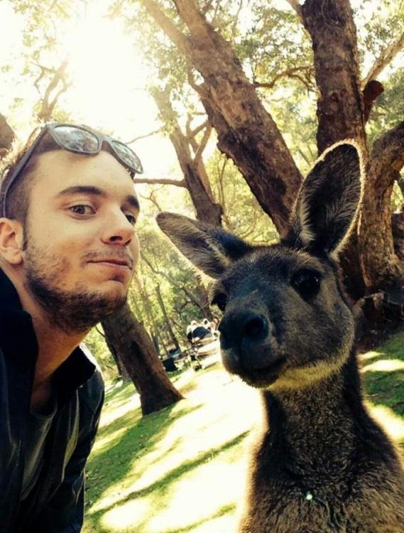 Entretanto, no Australia...