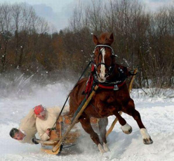 É difícil conduzir um trenó com um cavalo de potência...