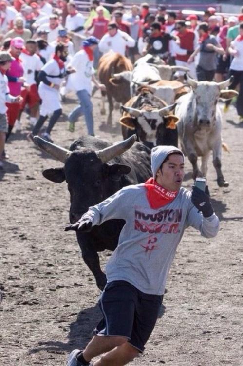 Olha mãe um touro me persegue!