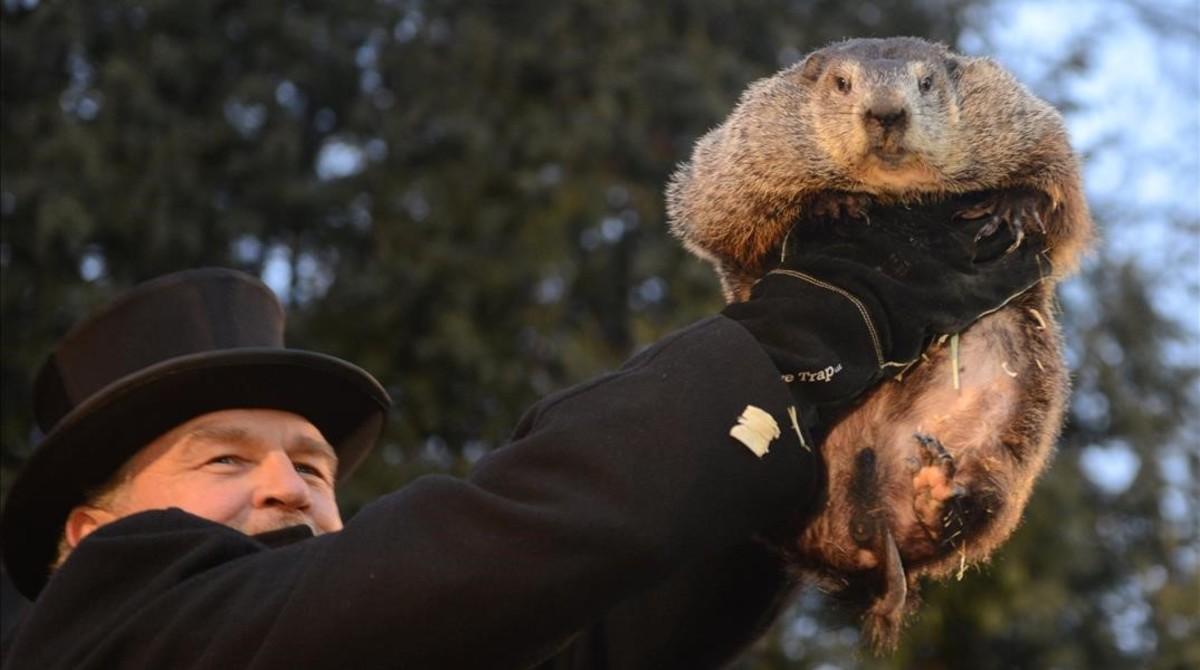 EUA: Dia oficial de Phil, a Marmota