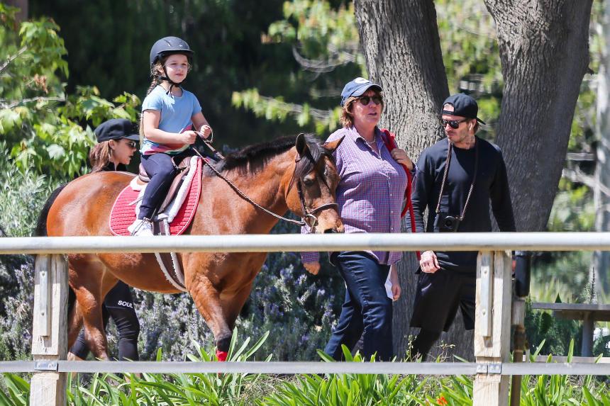 Os Beckham em aulas de equitação