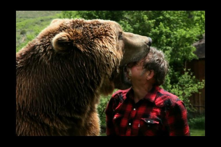 O famoso urso dos filmes, Bart The Bear