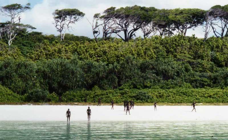 A Ilha Sentinela do Norte - Você não sairia vivo