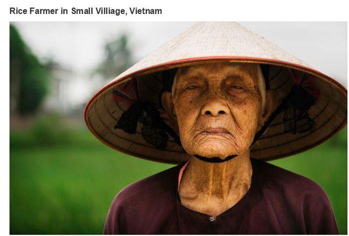 Um colhedor de arroz idoso no Vietnã