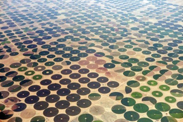 Campos de fazendeiros na Arábia Saudita