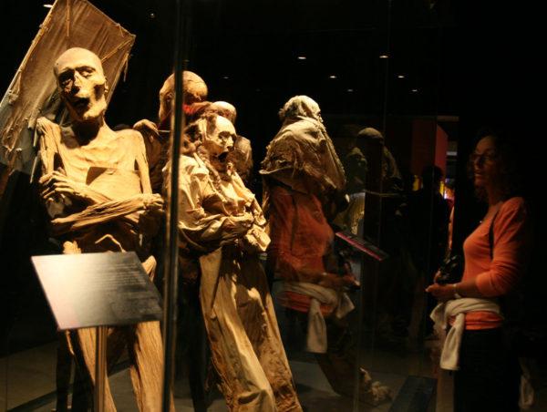 A maioria das múmias tinha uma maldição que as protegia