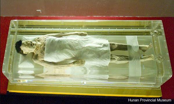 O curioso caso da múmia úmida