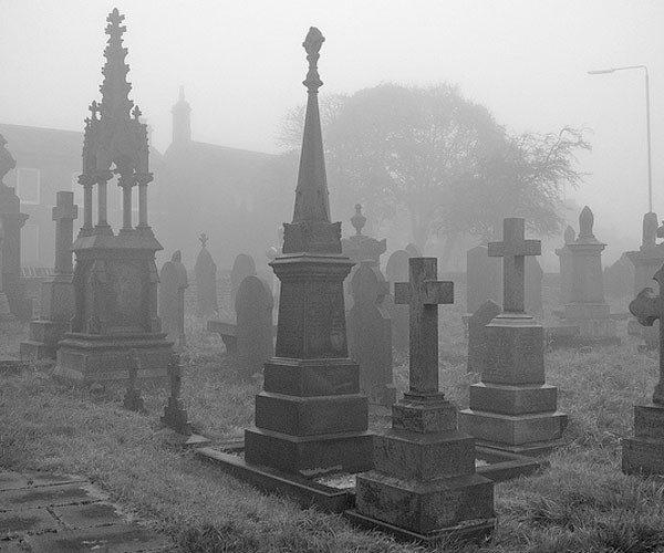 São registradas 55 milhões de mortes por ano