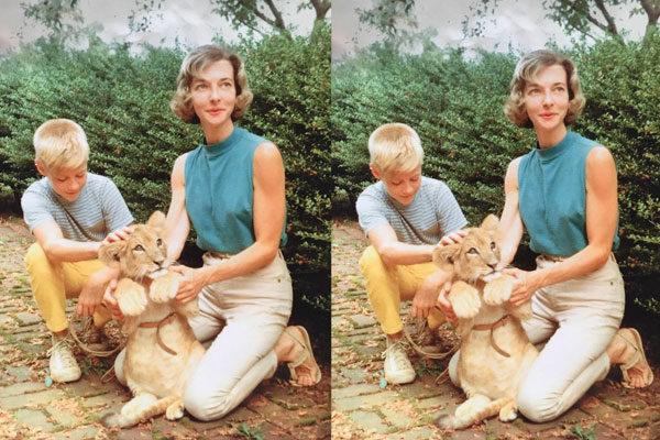 Uma avó veterinária muito legal, 1959