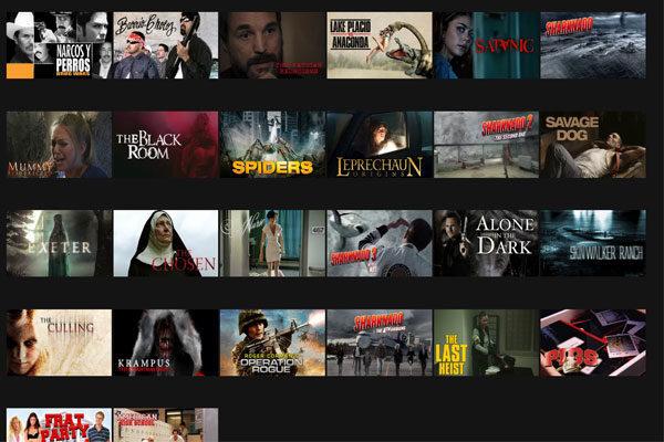 Filmes de Terror de Baixo orçamento, Código 8195