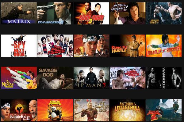 Filmes de Artes marciais, Código 8985