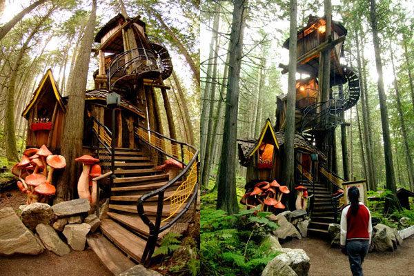 Casa da árvore do Bosque Encantado