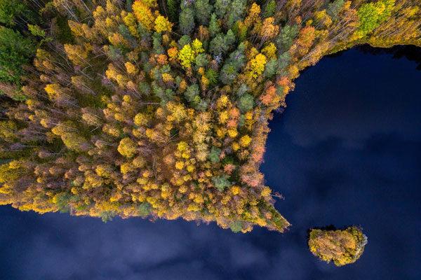 Ponto de outono