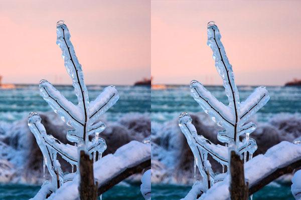 Natureza congelada