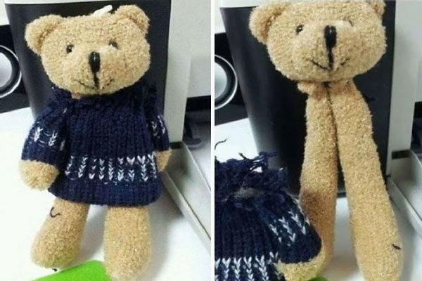 Um urso não tão urso