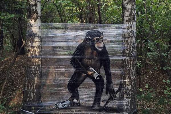 Um grande amigo primata