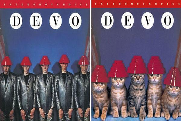 3e08a8406 As capas dos álbuns mais famosos são recriadas com estes gatinhos ...
