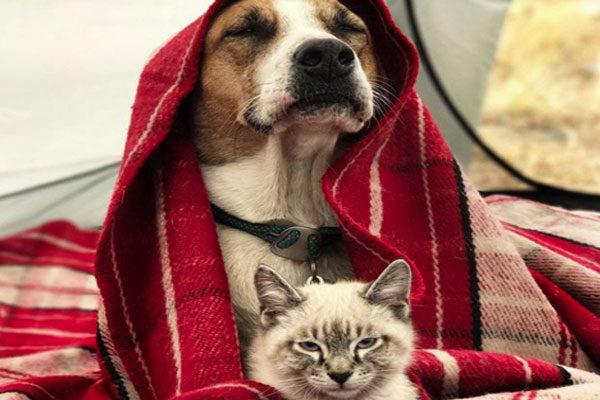 Você tem que se proteger do frio!