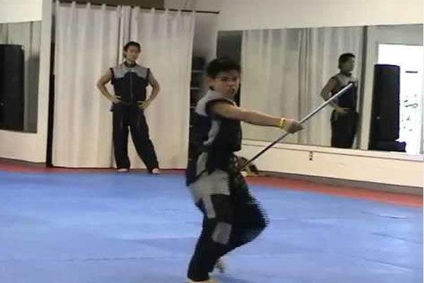 Karate profissional