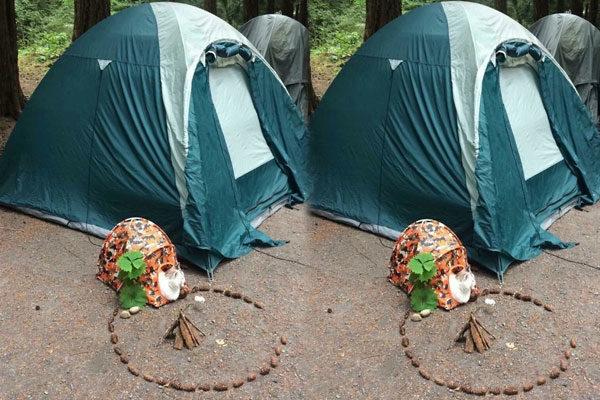 Prontos para acampar!